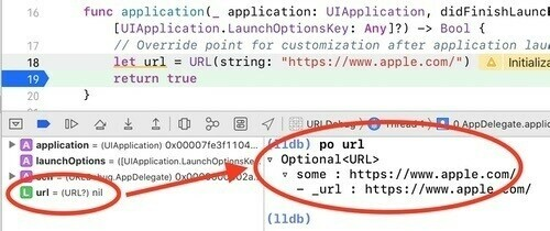 URL variable shows nil in variables pane, but is populated in lldb console